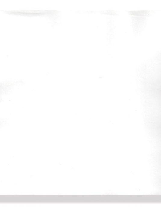 PACCO CARTA TERMICA ECG - griglia bianca - 210 x 295 mm